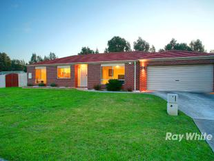 THE ONE YOU'VE BEEN LOOKING FOR - Cranbourne West