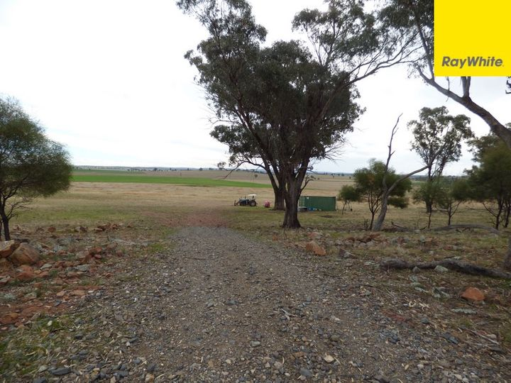 Lot 2 Allens Road, Forbes, NSW