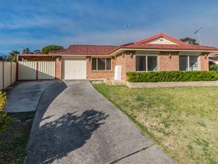 Fully renovated family home - Blacktown