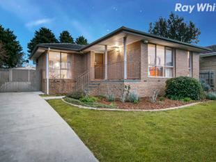 Family Favourite in Serene Surrounds - Rowville