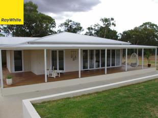 Beautiful Home in Rural Setting - Inverell