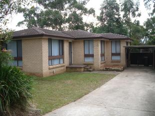 Neat & tidy 3 bedroom family home. - Quakers Hill