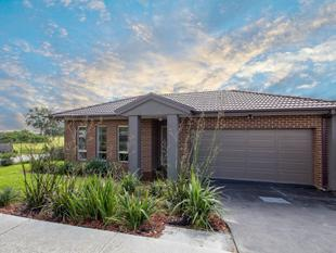 Your Castle on the Hill - Carrum Downs