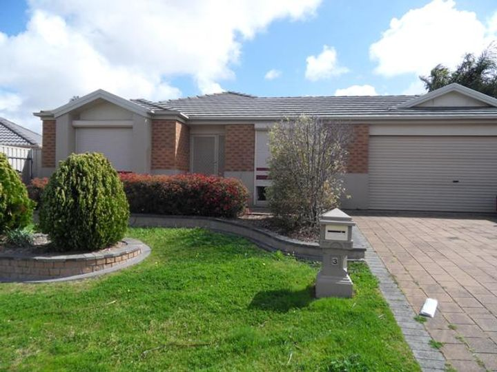 3 McKinley Court, Holden Hill, SA