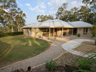 Designer House on 10 acres - Mount Hallen