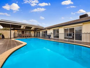 Immense Space, Immaculate Contemporary Class - Dingley Village
