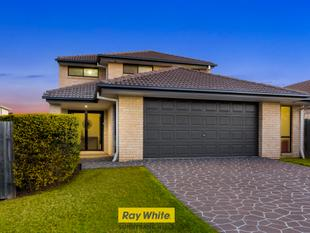 EXQUISITE FAMILY HOME IN SUNNYBANK HILLS SCHOOL CATCHMENT - Sunnybank Hills