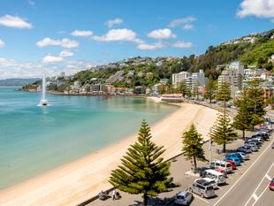 """The Best of The Best"" - Oriental Bay"