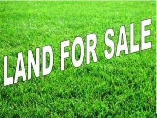VACANT LAND READY TO BUILD IN HENDRA... A RARE FIND! - Hendra