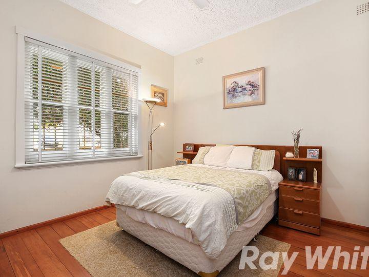 13 Ivy Street, Canterbury, NSW