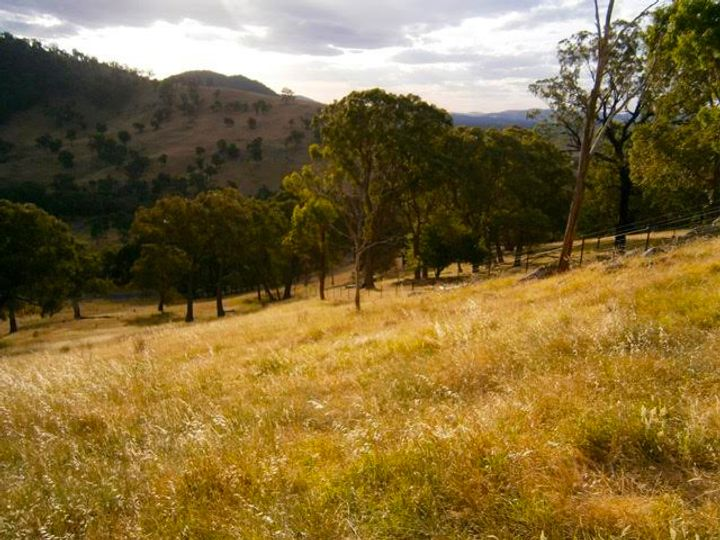 Lot 10 Goobragandra Road, Tumut, NSW