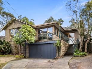 Family home on 908sqm - Mitcham