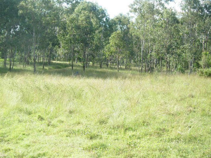 LOT 73 Maidenwell-Cooyar Road, Maidenwell, QLD