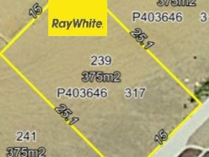 239 Westfield Road, Seville Grove, WA