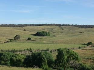 TOP LITTLE GRAZING PROPERTY - Bathurst