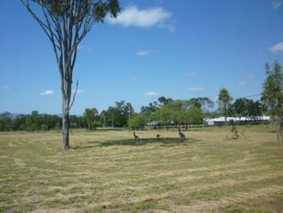 ACREAGE LIVING, TOWN WATER - Gracemere