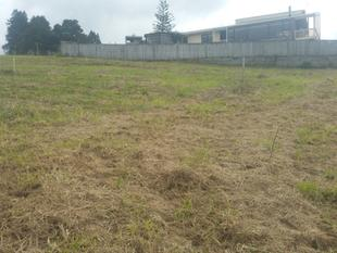 CHEAP SECTION $45,000 - Kaikohe
