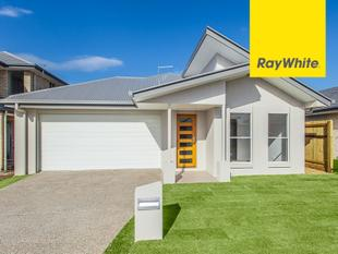 IMMACULATE LOW MAINTENANCE HOME - Mango Hill
