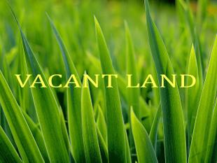 Elevated land- Open to Offers - Rye