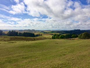 Elevated Views Looking Out Over Waimate North - Kerikeri