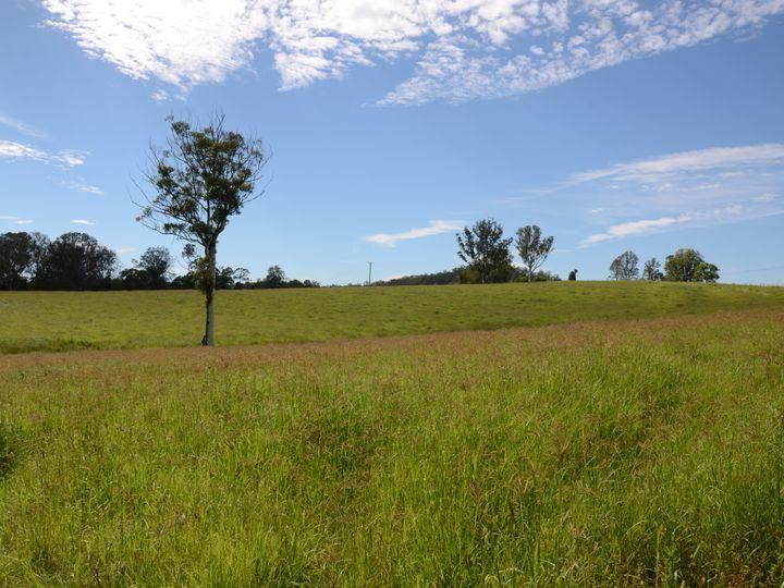 1197 Kenilworth Skyring Creek Road, Tuchekoi, QLD
