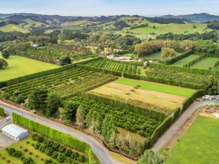 Lifestyle Orchard - Bountiful Backyard - Glenbervie