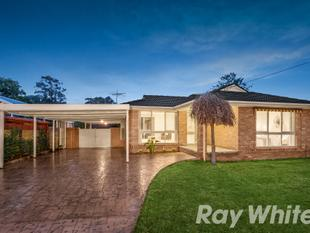 Room for the Family to Grow - Ferntree Gully