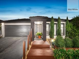 Fabulous 4 Br Family Entertainer - Walk To Mernda Rail / Town Centre - Doreen