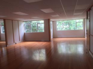 Large office space with consult rooms - Avondale