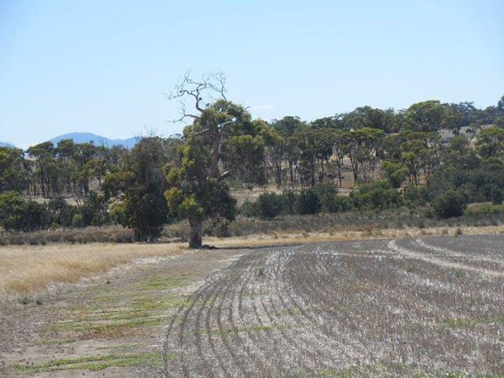 Lot 104 Fenton Heights, Kendenup, WA