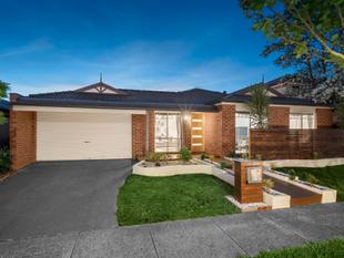 Fashionable Family Entertainer - Rowville