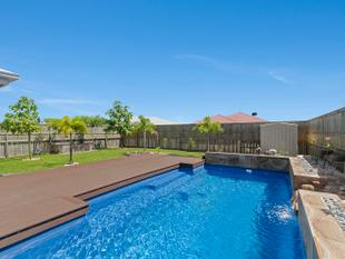 Tropical Pool Oasis + Deck + Outdoor Entertainment !! - Mount Low