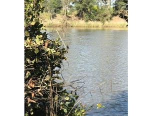 A Home In The Great Outdoors - 25 Acres Riverfront - Bethania