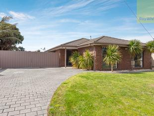 Big Block, Updated Style and Central Convenience - Craigieburn