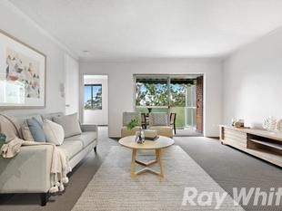 Extra spacious retreat in peaceful leafy surrounds - Lane Cove North