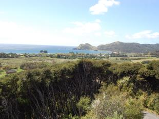 Views over Medlands - Great Barrier Island