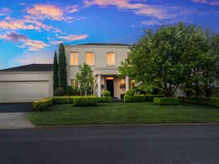 STUNNING ENTERTAINER - Warrnambool