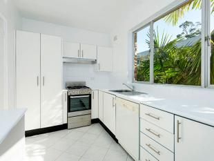 Renovated Apartment in Quiet Rear Position - Lane Cove