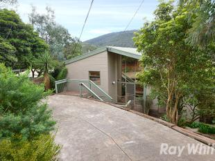 Beautiful tree lined hillside property - Upper Ferntree Gully