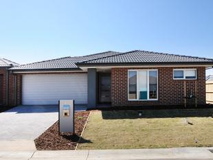 Brand New Family Home - Carrum Downs