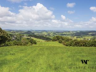 Top Drawer View in Wharfe Ridge - Te Arai