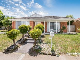 ROOM TO MOVE - Cranbourne West