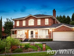 Dream Family Proportions - Wantirna South