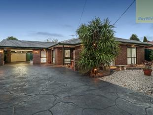 Outstanding Family Living  Inside and Out! - Craigieburn