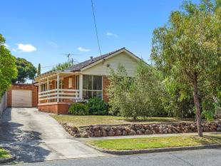 Outstanding Opportunity - Must be Sold! - Box Hill North