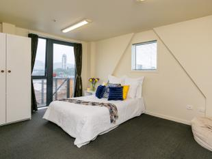 Corner Studio Apartment With Balcony - Te Aro