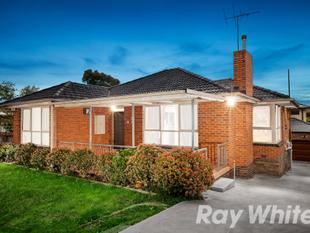Prime investment or live-in opportunity! - Burwood