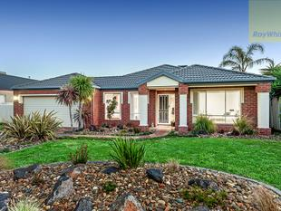 Flexible Family Living on 670m2 approx - Craigieburn