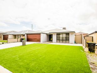 Great location and Caladenia Primary School. - Canning Vale