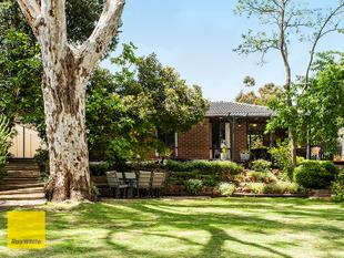 FABULOUS FAMILY HOME - Kalamunda
